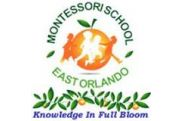 Photo of  *Montessori School of East Orlando