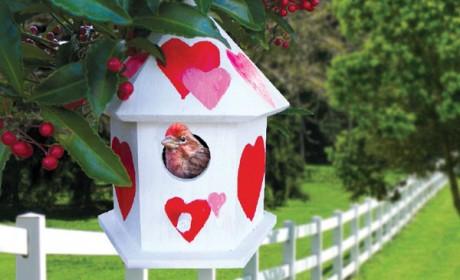 birdhouse_feature