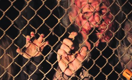 Dells Zombie Outbreak